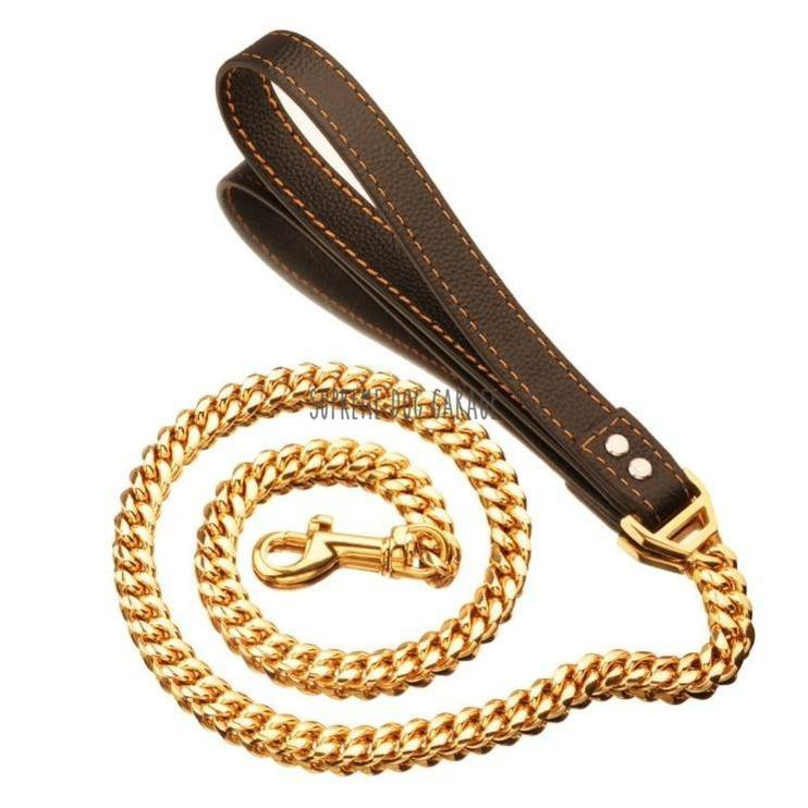 gold chain dog leash