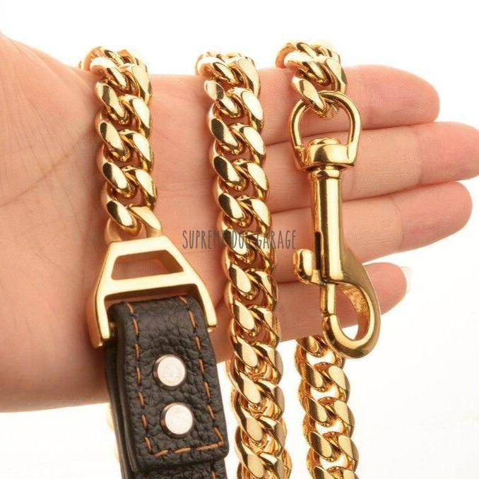 gold dog chain leash