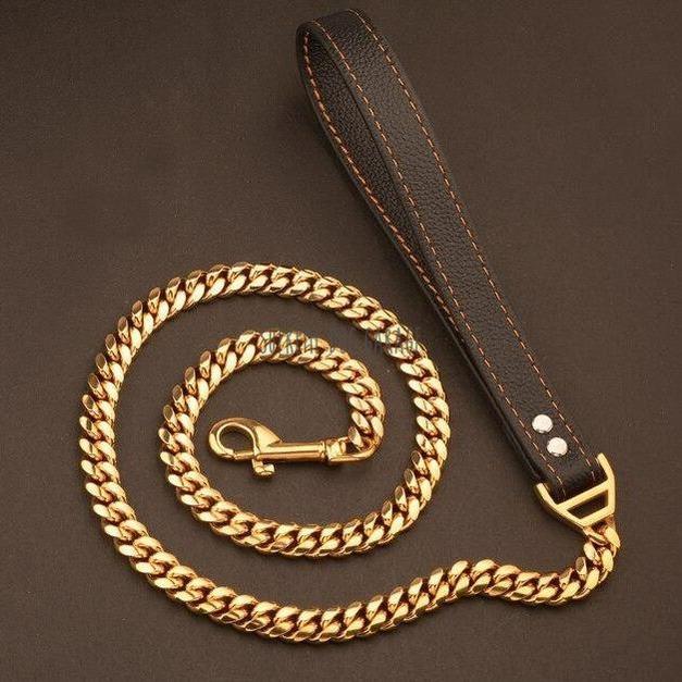 gold dog leash