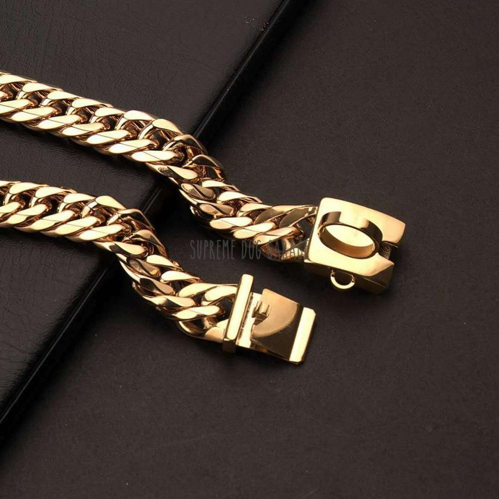 gold chain for dogs