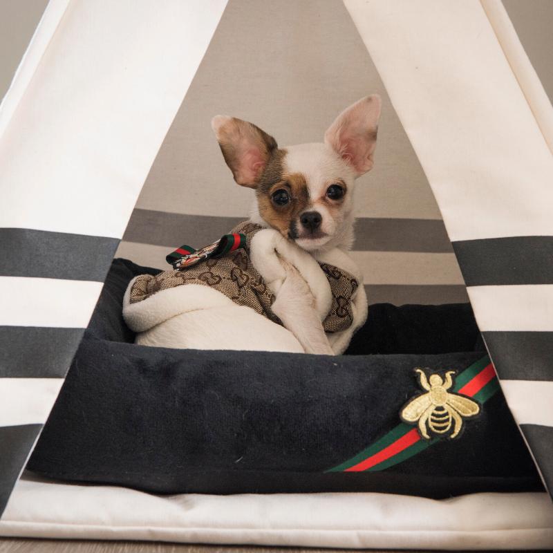 chihuahua dog bed